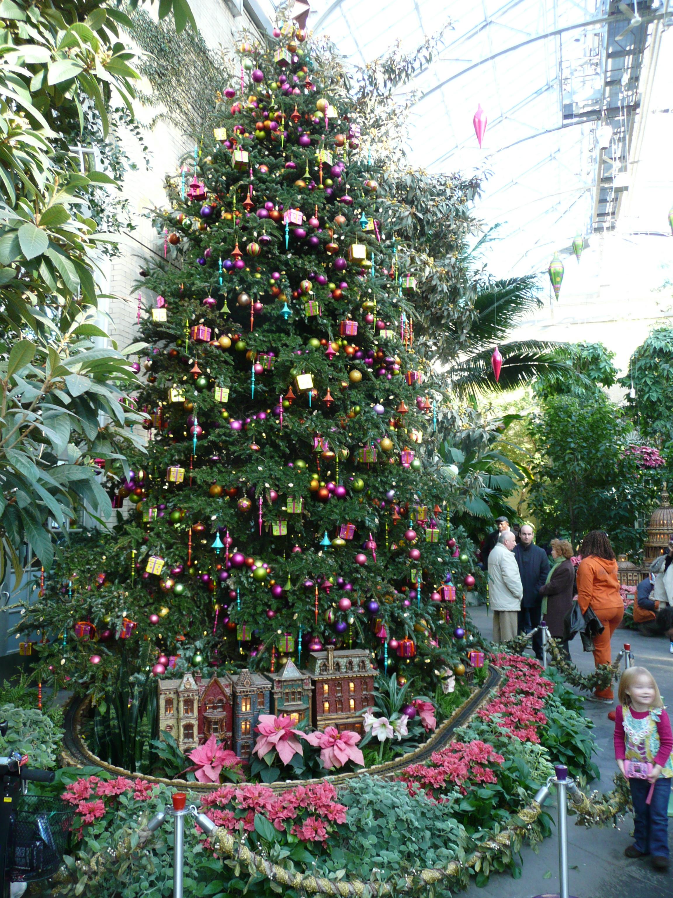 100 [ United States Botanic Garden Holiday ]