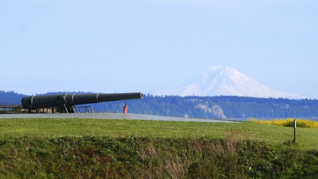 gun and Mt. Rainier